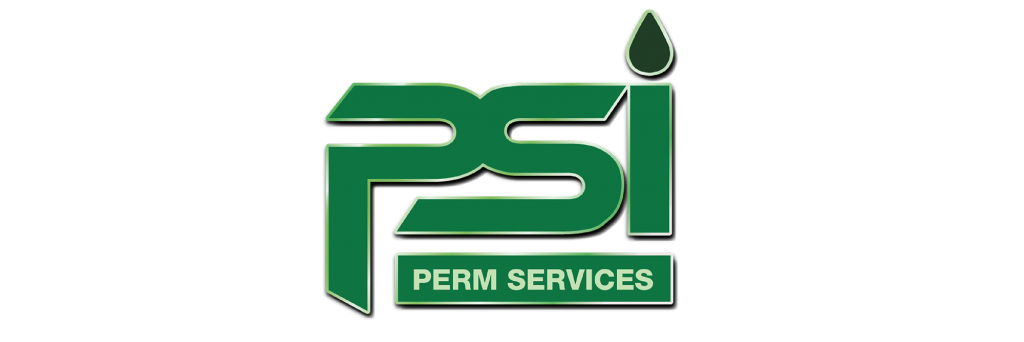 Company-Overview-Timeline-Aquisition-Of-Perm-Services-Ltd.-Perm-Logo-GEO-PSI